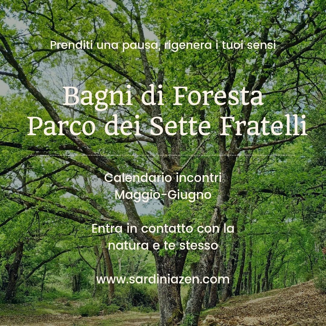 Calendario incontri Forest Therapy inSardegna